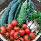 熱中症対策に効果的な食べ物まとめ|これで暑い夏を乗り切ろう!