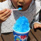 かき氷のシロップは全部同じ味だった!?ブルーハワイ味って何味?