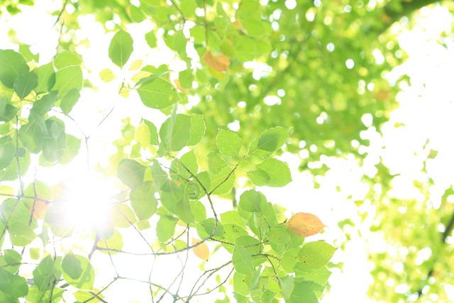 summer-cold-lingering-4