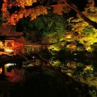 京都の紅葉、ライトアップしてる場所はココ!幻想的な風景を楽しもう