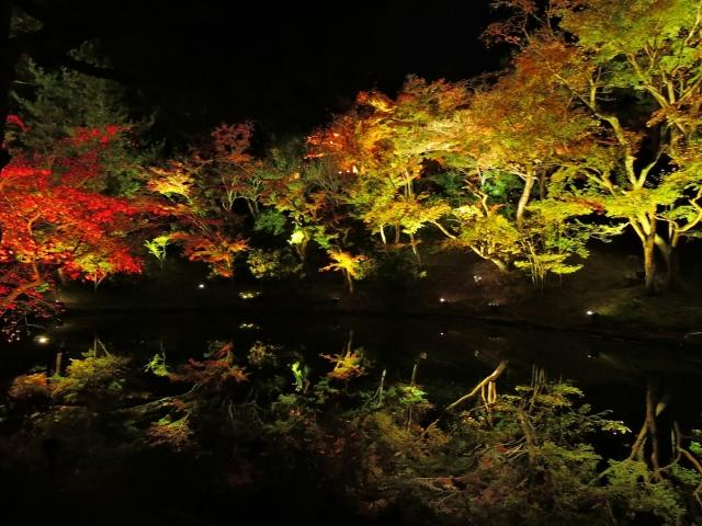 kyoto-kouyou-ranking-1