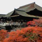 京都の紅葉の名所ランキング!ココさえ抑えれば間違いなし!