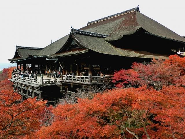 kyoto-kouyou-temple-1