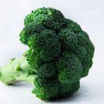 ブロッコリーは筋肉に最適!低カロリー高タンパクの理想の食材!