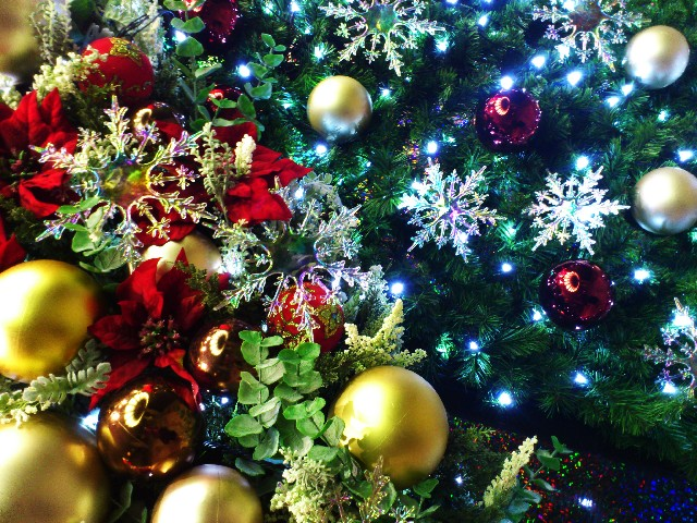 christmas-dislike-1