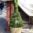 門松を飾る意味を知ってますか!?竹の切り口にもこんな意味がある!