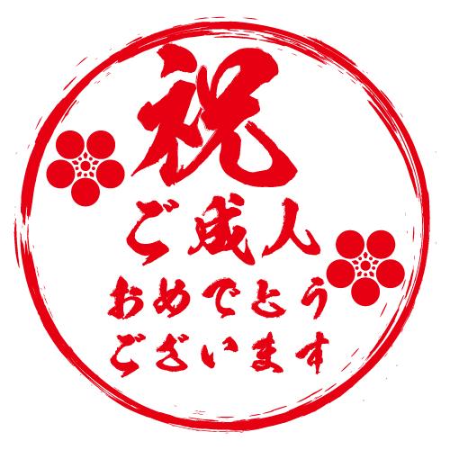 Seijinshiki oiwaibukuro 4