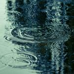 菜種梅雨の時期はいつをさす?意味や期間についても解説!