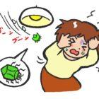 換気扇から虫が入るのが嫌!なら虫除けフィルターで侵入対策をしよう